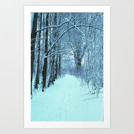Snow white path Art Print