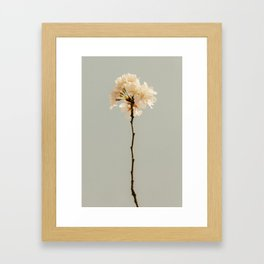 Blossom Framed Art Print