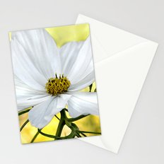Floral White Cosmos Stationery Cards