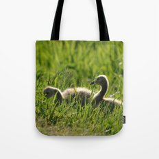 Goslings in the Grass Tote Bag