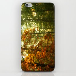 Mysterious Fall iPhone Skin