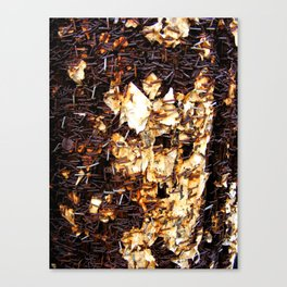 Rust1 Canvas Print