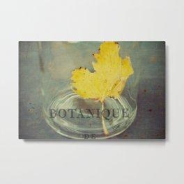 botanique Metal Print