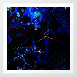 Nightsky Art Print