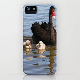 Black Swan and Cygnets iPhone Case