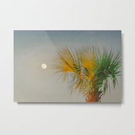 Moon and Palm Metal Print