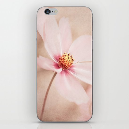 POWDERY SOFT iPhone & iPod Skin