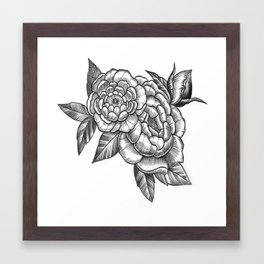 Peony Flowers Framed Art Print