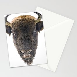 Bison Short Horns Long Face Hair Front View Mammal Stationery Cards
