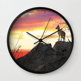 Steenbok at sunset in Kruger National Park Wall Clock
