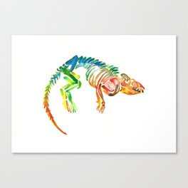 Mammal Fossil Skeleton Canvas Print