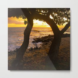 Two Trees In Tropical Paradise Sunset Metal Print