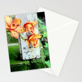 Elemental Exposure Stationery Cards