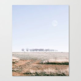 Followed by the moon Canvas Print
