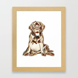 Happy Black Labrador puppy sits on white background. Animal themes        - Image Framed Art Print