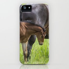 By Mother's Side iPhone Case
