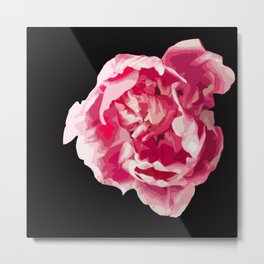 Pink Tulip Flower On A Black Background #decor #society6 #homedecor Metal Print