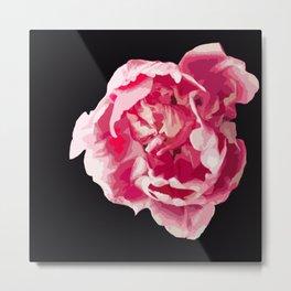Pink Tulip Flower On A Black Background #decor #society6 #homedecor Metal Print