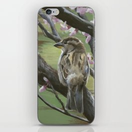 Sparrows of Spring 2 iPhone Skin