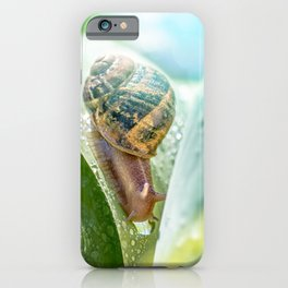 Crawling snail on green leaf with dew drop iPhone Case