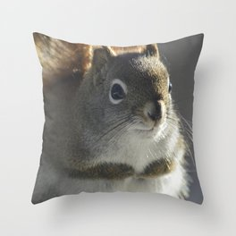 Red haired squirrel in soft focus Throw Pillow