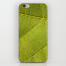 Fig Leaf iPhone & iPod Skin
