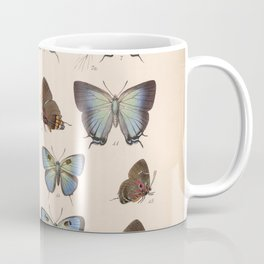 Vintage Hand Drawn Scientific Illustration Insects Butterfly Anatomy Colorful Wings Coffee Mug