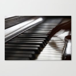 Musician play piano Canvas Print