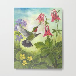 Hummingbird and Columbine Metal Print