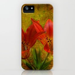 Textured Glory of the Prairies iPhone Case