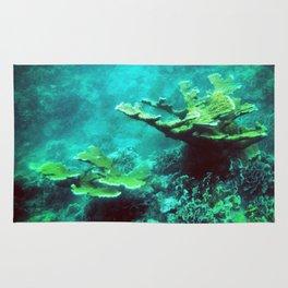Under the Sea Coral Reef Caribbean Rug