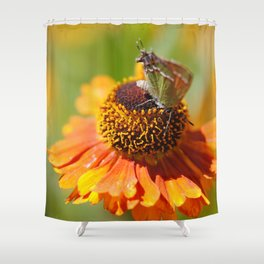 Flutter Shy Shower Curtain