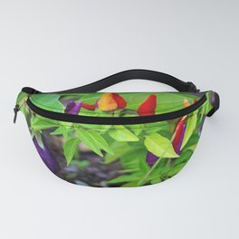 Colorful Peppers Fanny Pack