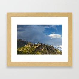 Natural Bonsai Framed Art Print