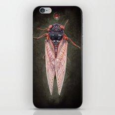 Cicada  iPhone & iPod Skin