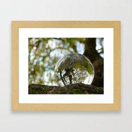 A tree seen through the glass ball Framed Art Print