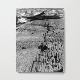Board, Yet Metal Print
