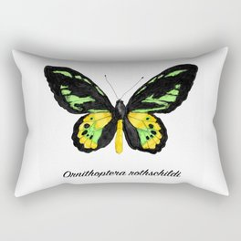 Rothschild's Birdwing Butterfly Specimen Rectangular Pillow