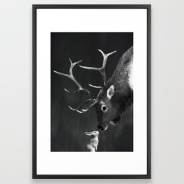 Elk and Rabbit Framed Art Print