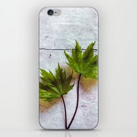 couple iPhone & iPod Skins featuring couple by Claudia Drossert