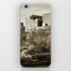 Vintage City Park iPhone & iPod Skin