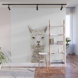Alpaca Front & Center Wall Mural