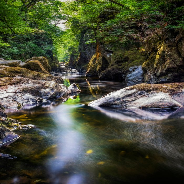Summer At Fairy Glen Comforters