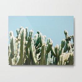 Tall cacti | Cactus photo print | Colourful travel wanderlust photography art Metal Print