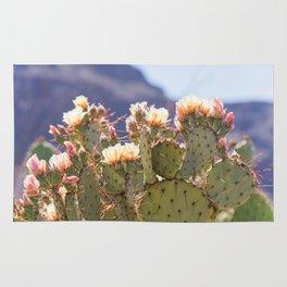 Prickly Pear Cactus Blooms, II Rug