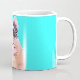 Baby Pig Turquoise Background Coffee Mug
