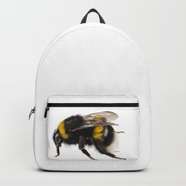 Bumblebee species Bombus terrestris Backpack