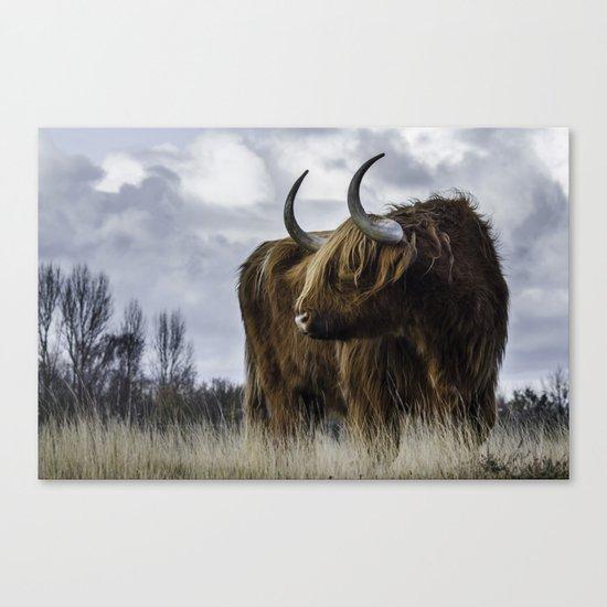 Highlander 3 Canvas Print