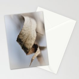 Curled Elegance... (square) Stationery Cards