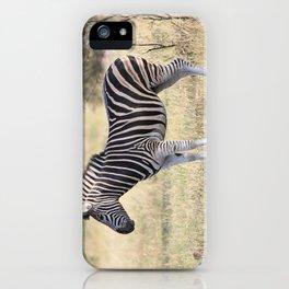 African Zebra in the Wild iPhone Case